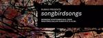 songbirdsongs