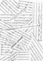 Thea Zimpel: Flute concerto for Sarah Hewat