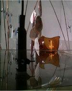 Floating Glass: Ros Bandt