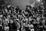ACO : The Crowd
