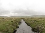 Crossing Dartmoor