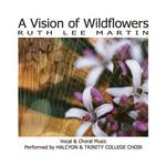 vision of wildflowers