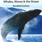 Whales, waves & the ocean