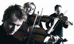 Photo of Australian Chamber Orchestra
