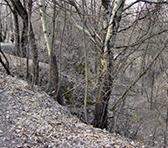 Babi Yar ravine in present-day Ukraine