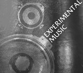 Experimental Music - audio explorations in Australia, ed. by Gail Priest (detail of book cover)