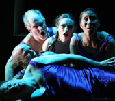 <em>The Navigator</em> at the Melbourne International Arts Festival