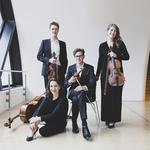 Flinders Quartet: Translations