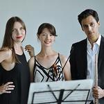 Chrysalis Trio in Narre Warren