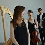 Chrysalis Trio in Warragul