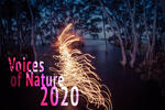 Voices of Nature 2020