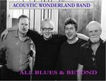 Acoustic Wonderland Band