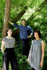Firebird Trio - Gypsy in My Soul