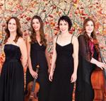 Australian String Quartet: Cypresses