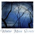 Winter Moon Secrets