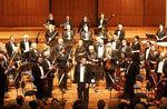 Zelman Symphony Orchestra