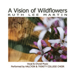 vision of wildflowers