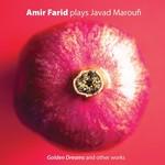 Amir Farid plays Javad Maroufi