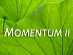 MOMENTUM II for early-career artists