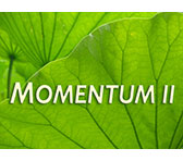MOMENTUM II for early-career artists now open for EOIs