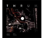 THRUM - exploring multiphonics & percussive piano