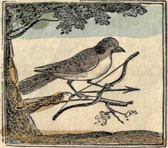 Illustration from <em> The Courtship, Marriage,&c. of Cock Robin and Jenny Wren</em>