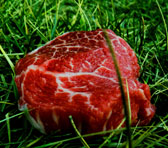 Fresh Meat - between the emerging and the established